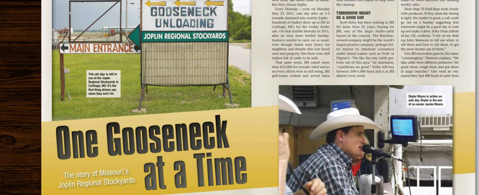 gooseneck-1