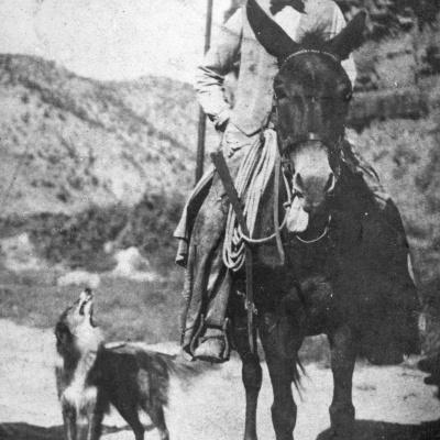 Utah's Last Cattle King