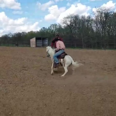 Pony with a Bucking Problem – by Deanna Evans