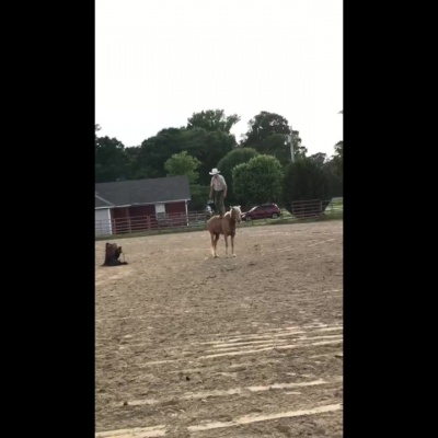 Balancing On a Horse – by Wes Marlowe