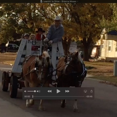video thumbnail of child learning to drive a horse