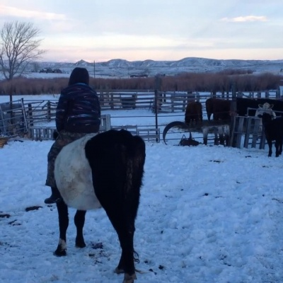 Winter Fun with Oreo – Janelle Prows
