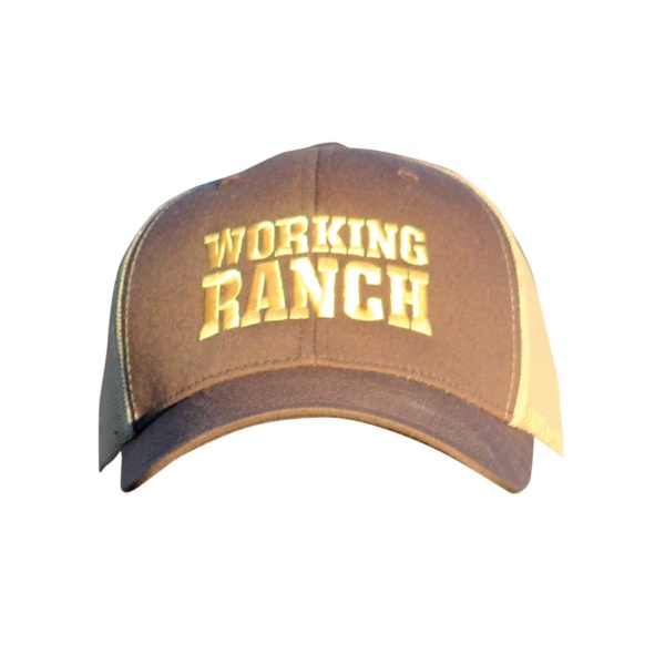WORKING Ranch hat