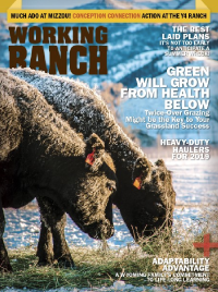 Working Ranch Jan Feb 19 cover