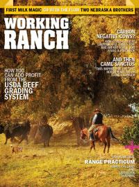 November December 2020 Cover Image